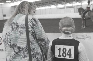 Horses001W