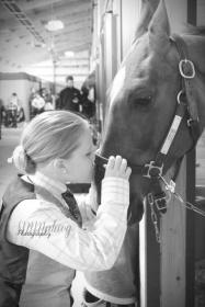 Horses004W
