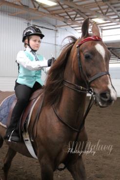 Horses007W