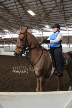 Horses009W