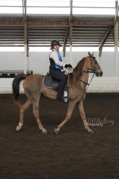 Horses010W